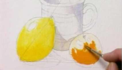 6 Meyve çizimi Gölge Ve Işik Eklemek Video