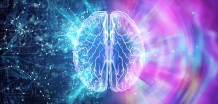Sürecin Nörolojik Etkileri